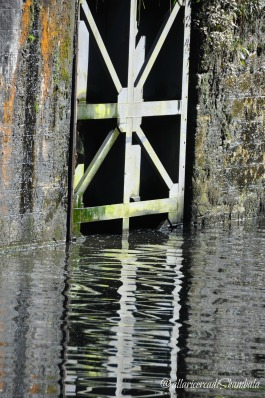 Canal du Nivernais 21