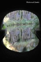 Canal du Nivernais 5