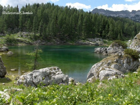 Triglav National Park 10