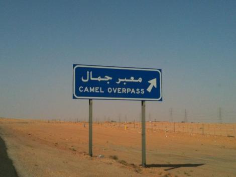 Saudi deserto 1 (1)