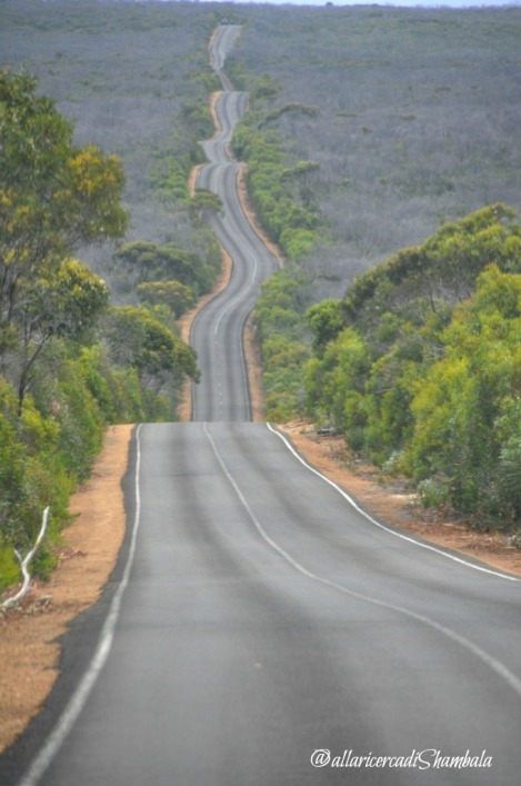 Strada_Kangaroo island, Australia