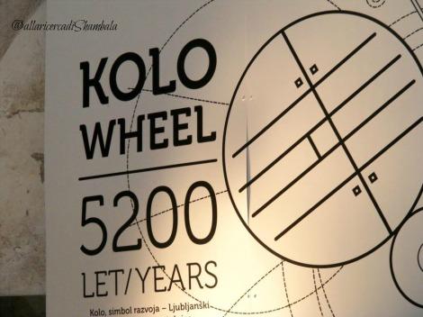 Lubiana Koho Wheel
