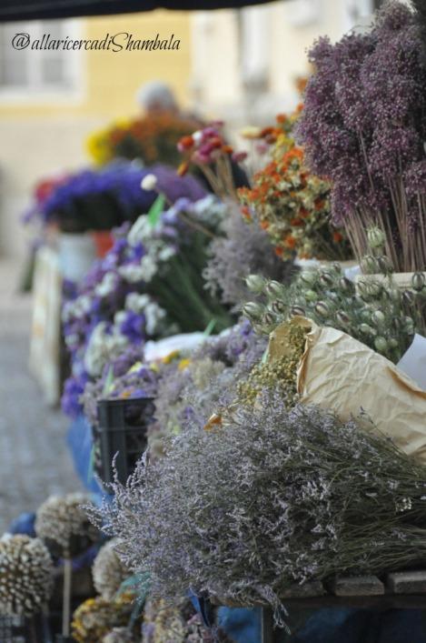 Lubiana - mercato dei fiori