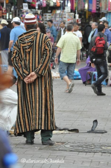 Marrakech 8