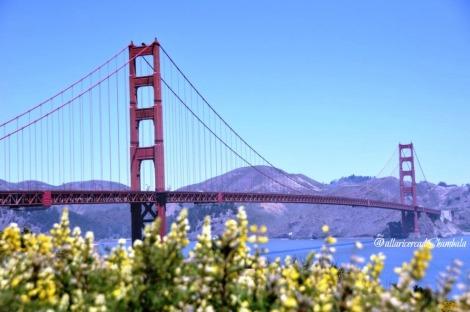 Golden Gate Header