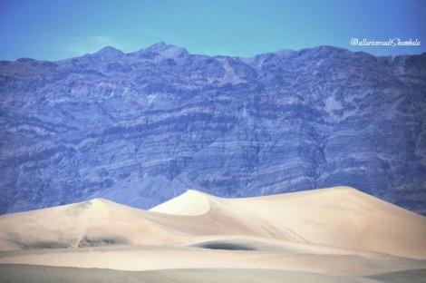Mezquite Flat