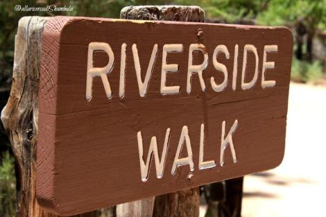 Zion NP riverside walk