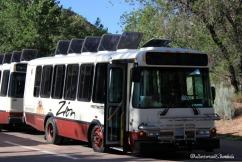 Zion NP shuttle