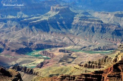 Grand Canyon_14